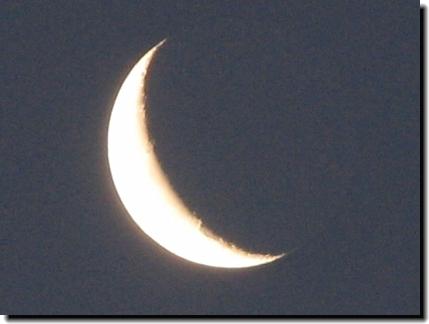 夜明けの月